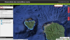 photo article Tahiti Info obs SIG 2