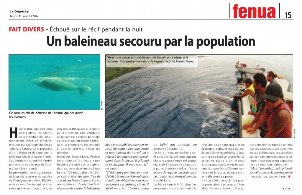 Baleineau sauvetage