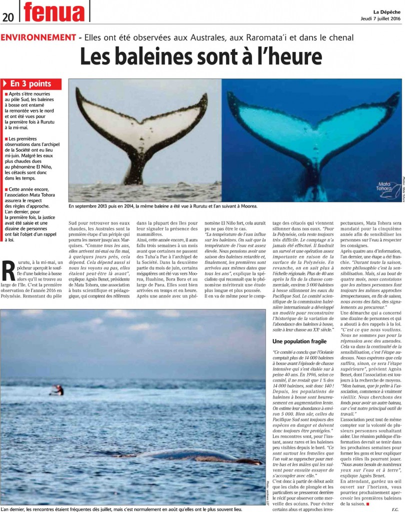 baleine-article-07-07-2016-Depeche-de-Tahiti.pdf