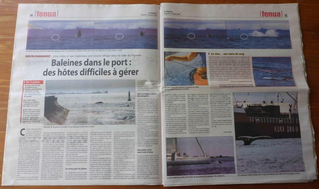 La Depeche Tahiti Baleine dans la passe de PPT double page