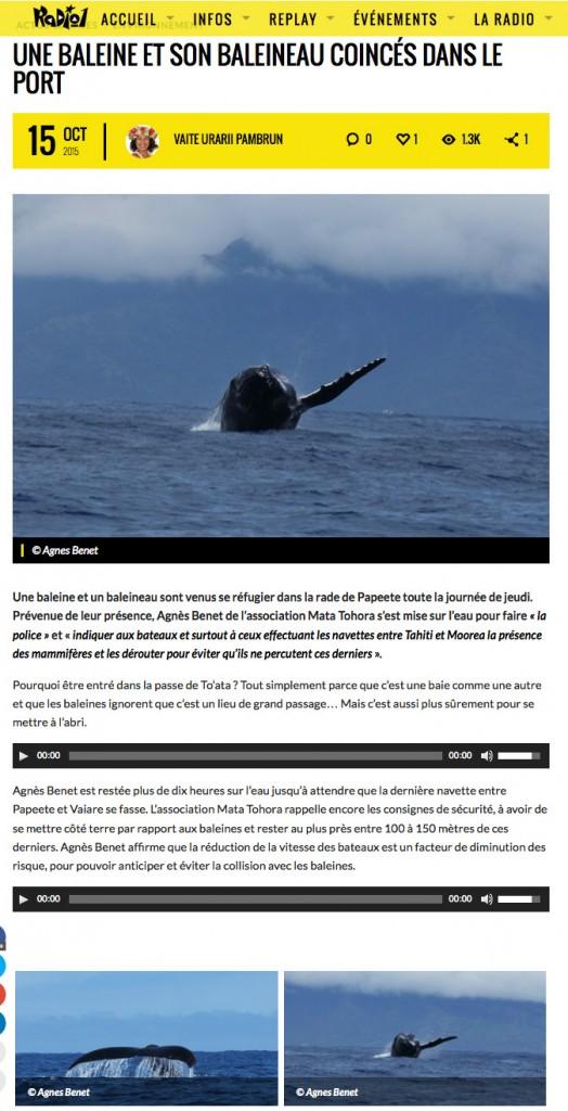 Radio 1 baleines dans la passe PPT 2015