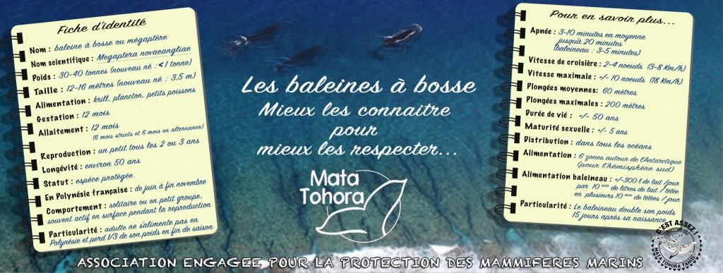 page-de-couverture-mata-tohora-14